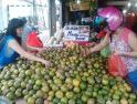 Murah, Harga Jeruk Siam asal Sambas di Kota Pontianak Rp 10 Ribu per Kg
