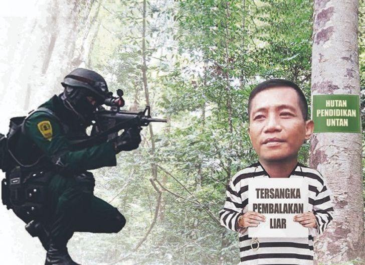 Photo of Bos Illegal Logging Ditangkap