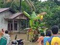Banjir Terjang Desa Upe Sanggau,Imbas Curah Hujan Tinggi dalam Seminggu