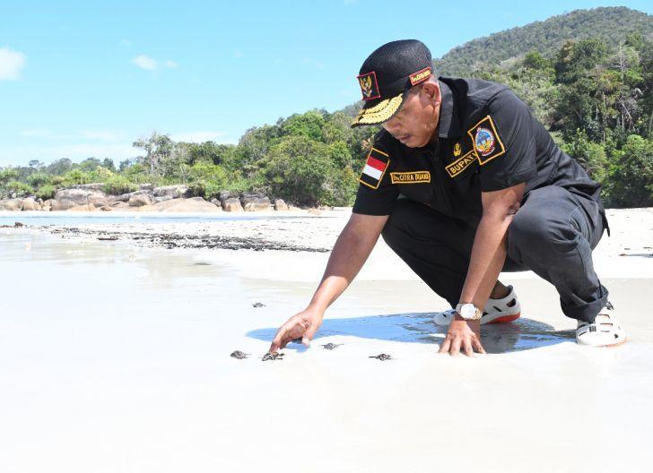 Photo of Merawat Cagar Alam Laut untuk Anak Cucu, Bupati Lakukan Pelepasan Tukik Citra di Pesisir Pantai Pulau Karimata