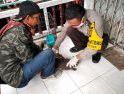 6.464 Hewan di Sanggau Divaksin Rabies, 336 Kasus Gigitan HPR per 13 Juni 2020