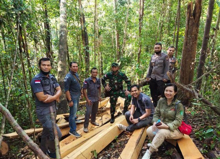 Photo of Tim Gabungan Berhasil Menyergap Pelaku Pembalakan Liar Hutan Lindung Kapuas Hulu