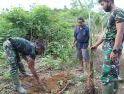 Bantu Warga Tanam Pohon Pisang, Komsos Satgas TMMD Reguler ke-108 Kodim 1203/Ktp, Selesai Bekerja di Sasaran Fisik