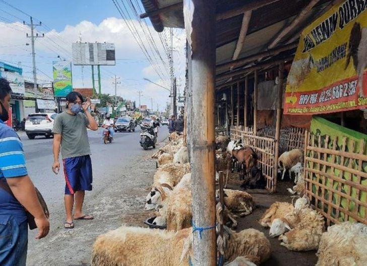 Photo of Jelang Iduladha Tahun Ini, Curhat Pedagang Hewan: Jualan Turun Signifikan!