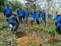 Tanam Pohon dan Hijaukan Bumi, Cara FRKP West Borneo Vespa Lovers Peringati HUT ke-2