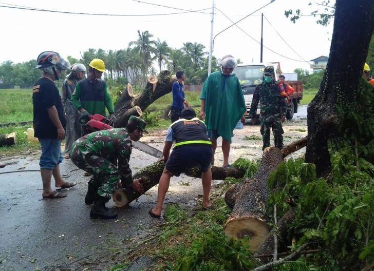 Photo of Babinsa Koramil 05/Skw Bersama Warga Gotong Royong Bersihkan Pohon Tumbang