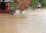 Photo of Dewan Ajak Masyarakat Tanam Pohon Cegah Banjir