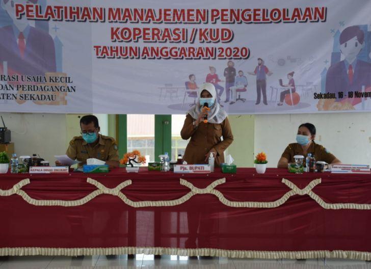 Photo of DKUKMP Sekadau Latih Manajemen Usaha Koperasi