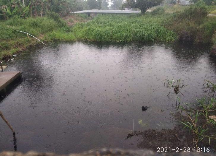 Photo of Pemerintah 'Kelamaan' Normalisasi Parit, Karhutla Berkobar di Sungai Raya Dalam