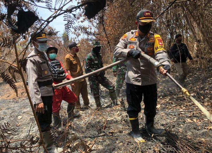 Photo of 1 Hektare Hutan Pinus dan Sawit Terbakar