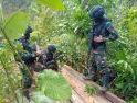 Patroli Batas Negara hingga ke Hutan Lindung, Satgas Yonif 407/PK Temukan Katu Olahan Hasil Ilegal Loging