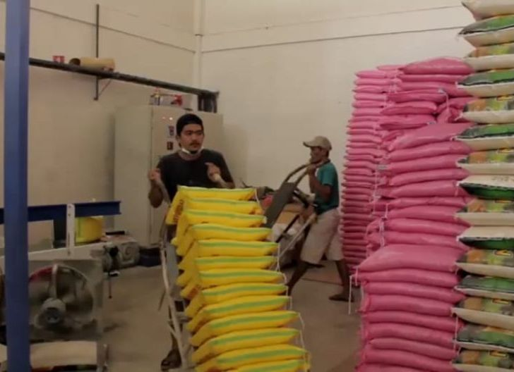 Photo of Gunakan Listrik PLN, Pelaku Usaha Agrobisnis Meraup Keuntungan Lebih Besar