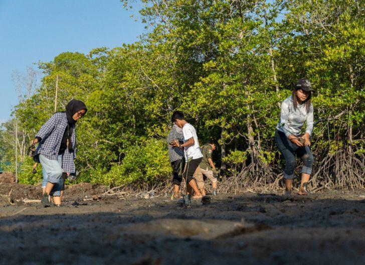Photo of Kolaborasi Masyarakat, Swasta, dan Pemkab Ketapang Peringatan Hari Mangrove Sedunia di Kuala Satong