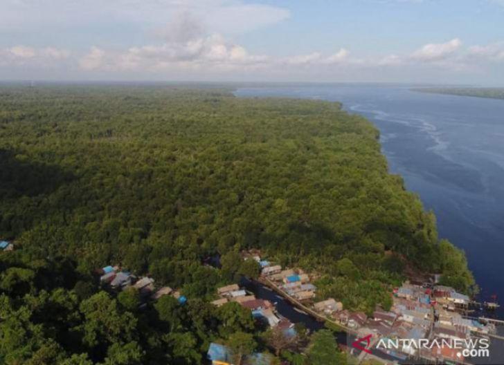 Photo of Bisa Jadi Pusat Mangrove Dunia, Ini Karya Pegiat Lingkungan Harap Kubu Raya