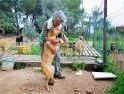 Turki, Negara Islam yang Sahkan UU Perlindungan Anjing dan Kucing