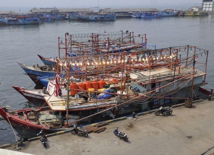 Photo of Pengangguran Sektor Perikanan Terancam Meningkat, Pemilik Kapal di Kalbar Tolak Kenaikan PNBP