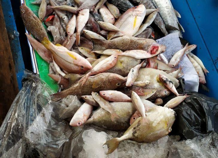 Photo of Beban Ganda Nelayan di Tengah Pandemi